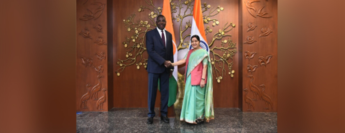 External Affairs Minister meets Saidil Moctar Mohamed, Minister and Special Adviser to the President of Republic of Niger in New Delhi